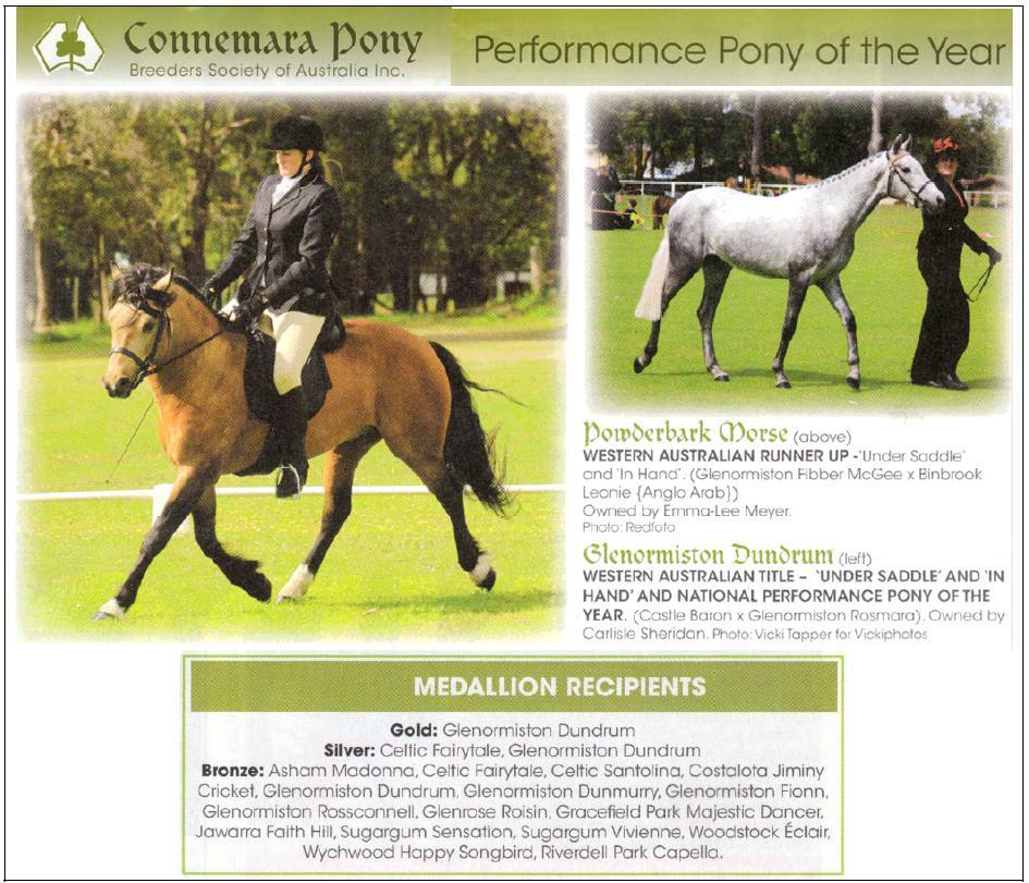 PerformancePony2012 Dundrum wins the National Performance Pony of the Year Award!
