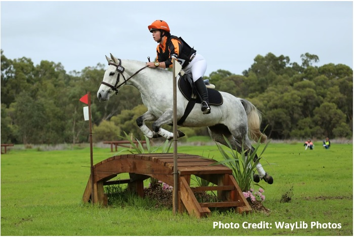 Matilda BrigadoonODE web Powderbark Matilda Bay going great guns on the eventing scene!