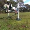 Bronte & Powderbark Eireann- jumping 1m10